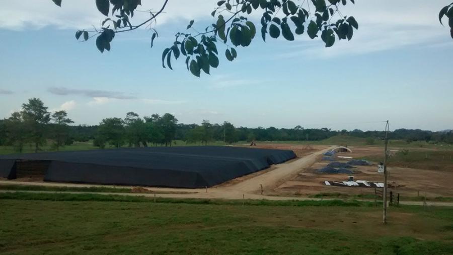 Preparación de terreno para viveros